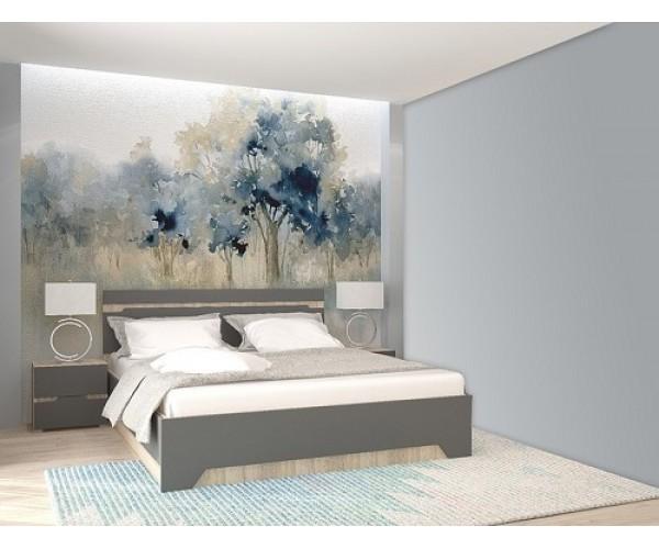 Спальня АНТ (кровать 1,6 м б/м б/о+2 тумбы) сонома/графит софт